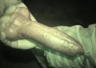 Grey doggy has a really massive sausage